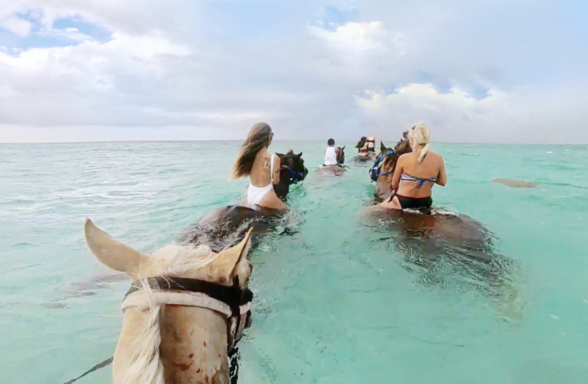 grand cayman excursions, swim with ponies in grand cayman, cayman islands, adventures in grand cayman