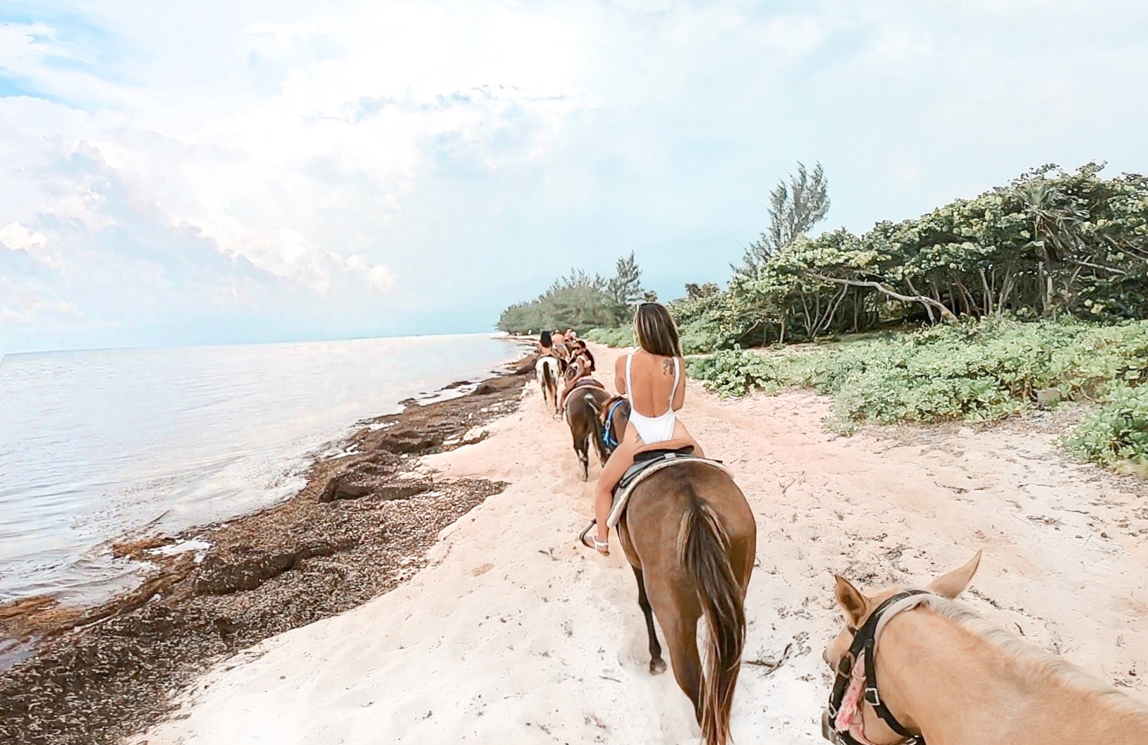 Horseback riding in the Caribbean, swim with ponies in grand cayman, grand cayman