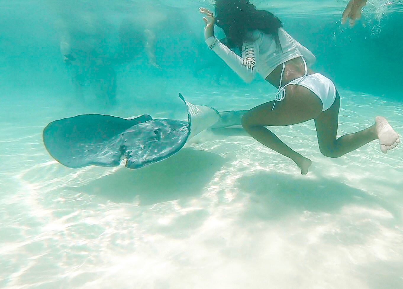 Stingray city, Grand Cayman Islands, cleat Caribbean water